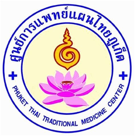 Essay on Traditional and Alternative Medicine for Type Two